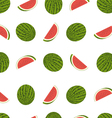 tasty watermelon seamless pattern vector image vector image
