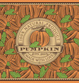 vintage pumpkin label on seamless pattern vector image