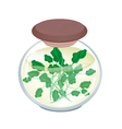 A Jar of Delicious Pickled Green Watercress vector image vector image