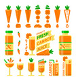 carrot and fresh juice flat elements vector image vector image
