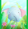 cute baby elephant sitting in savannah in grass