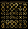 Set of dark gold-framed design elements vector image vector image
