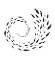 spiral fish shoal vector image