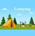 tent campfire forest and water vector image