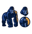 big muscle body of gorilla mascot vector image vector image