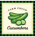 Farm Fresh Cucumbers vector image vector image