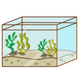 fishtank with no fish inside on white background vector image