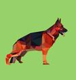 German shepherd dog low polygon style vector image vector image