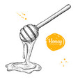 honey wooden spoon with drop hand drawn vector image vector image