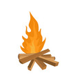 small woods fire icon flat style vector image