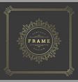 vintage flourishes ornament swirls lines frame vector image vector image