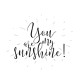 you are my sunshine inscription greeting card vector image