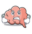 angry brain character cartoon mascot vector image