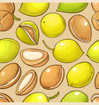 argan nuts pattern on color background vector image vector image