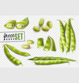 green beans realistic transparent set vector image vector image