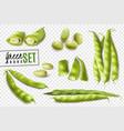 Green beans realistic transparent set