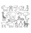 wild animals black and white graphic in the line vector image