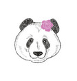 cute and romantic panda girl with pink rose behind vector image
