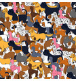 cute seamless pattern with cartoon different dogs vector image vector image
