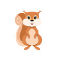 cute squirrel lovely animal cartoon character vector image