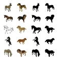 Dogs and horses vector image