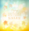 enjoy autumn sales background with colorful leaves vector image
