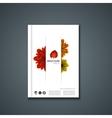 flyer or banner Brochure template vector image vector image