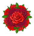 hand drawn red rose bouquet isolated vector image vector image