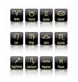 zodiac sign icons vector image