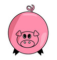 cartoon pig symbol icon design cute animal vector image