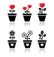 Heart in flower pot icons set vector image vector image