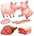 Pig and pig products vector image vector image