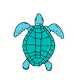 sea turtle swimming drawing vector image vector image