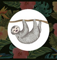 cute sloth cartoon vector image