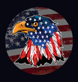 eagle usa vector image vector image