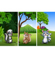 set of three funny animals with nature background vector image vector image