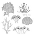 set with corals and algae vector image