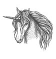 unicorn mythic horse with horn sketch vector image