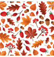 autumn leaves and berries seamless pattern vector image