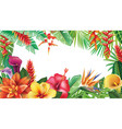 banner from tropical flowers vector image vector image