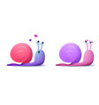 couple snail on a white background vector image vector image