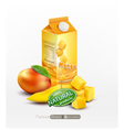 pack of mango juice with slices and diced mango vector image vector image