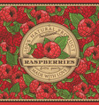 vintage raspberries label on seamless pattern vector image vector image