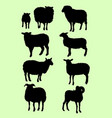 black sheep silhouettes vector image