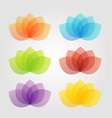 Graceful lotus with 5 petals vector image vector image