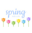 hello spring hand lettered quote with set six vector image