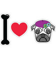 I love pug female with beret and flowers vector image vector image