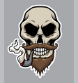 pirate skull with pipe mustache and beard vector image