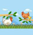 scene with chickens in garden vector image vector image