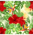 seamless texture tropical flowers strelitzia and vector image vector image